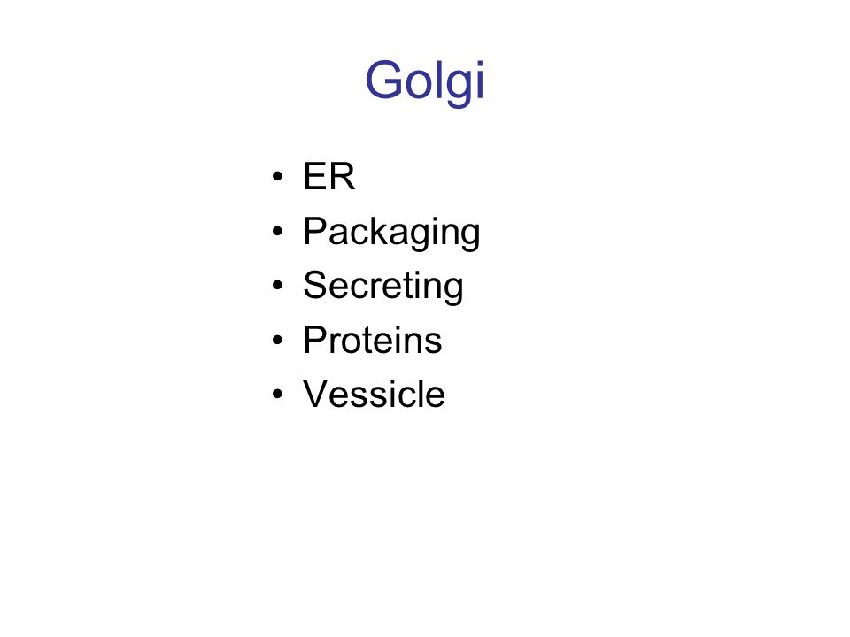 Golgi ER Packaging Secreting Proteins Vessicle