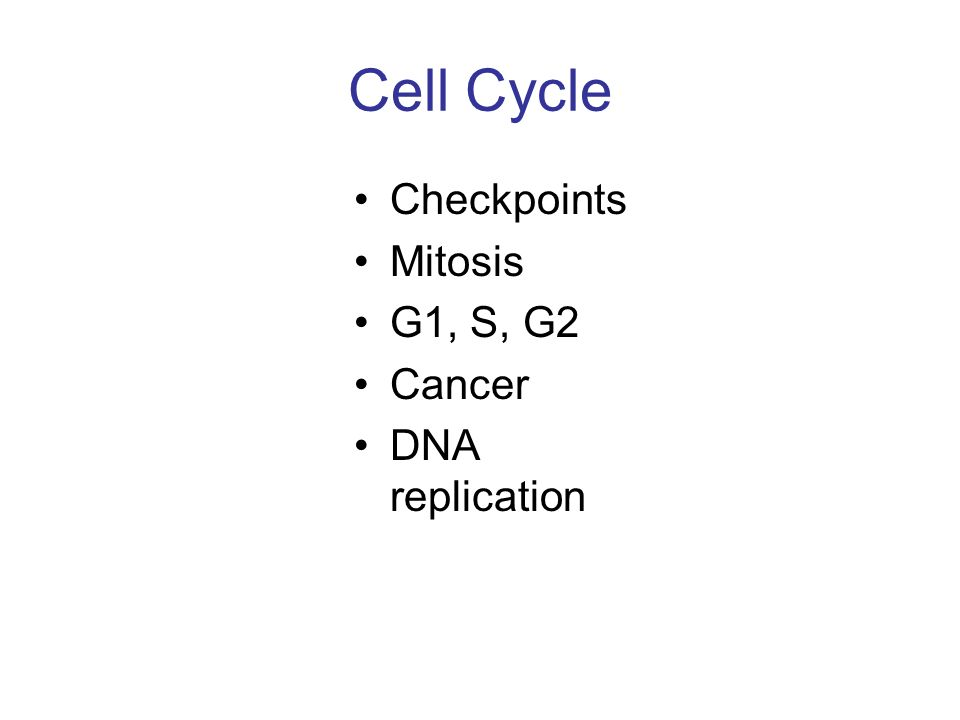 Cell Cycle Checkpoints Mitosis G1, S, G2 Cancer DNA replication