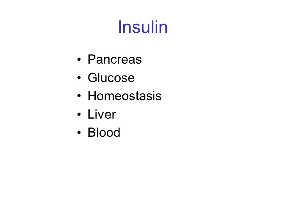 Insulin Pancreas Glucose Homeostasis Liver Blood