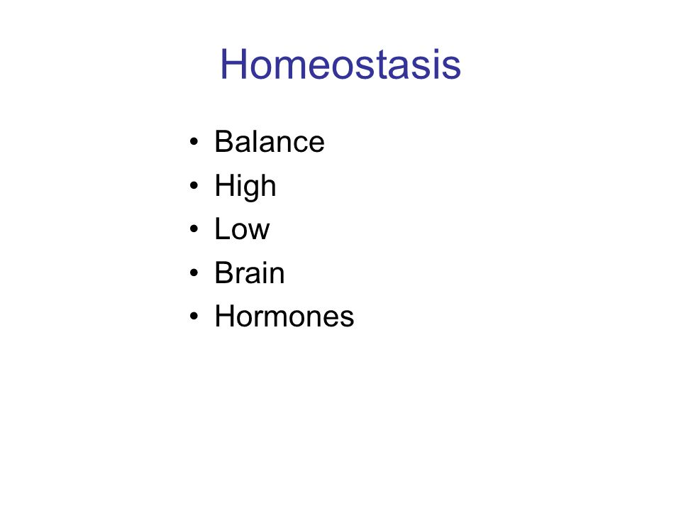 Homeostasis Balance High Low Brain Hormones