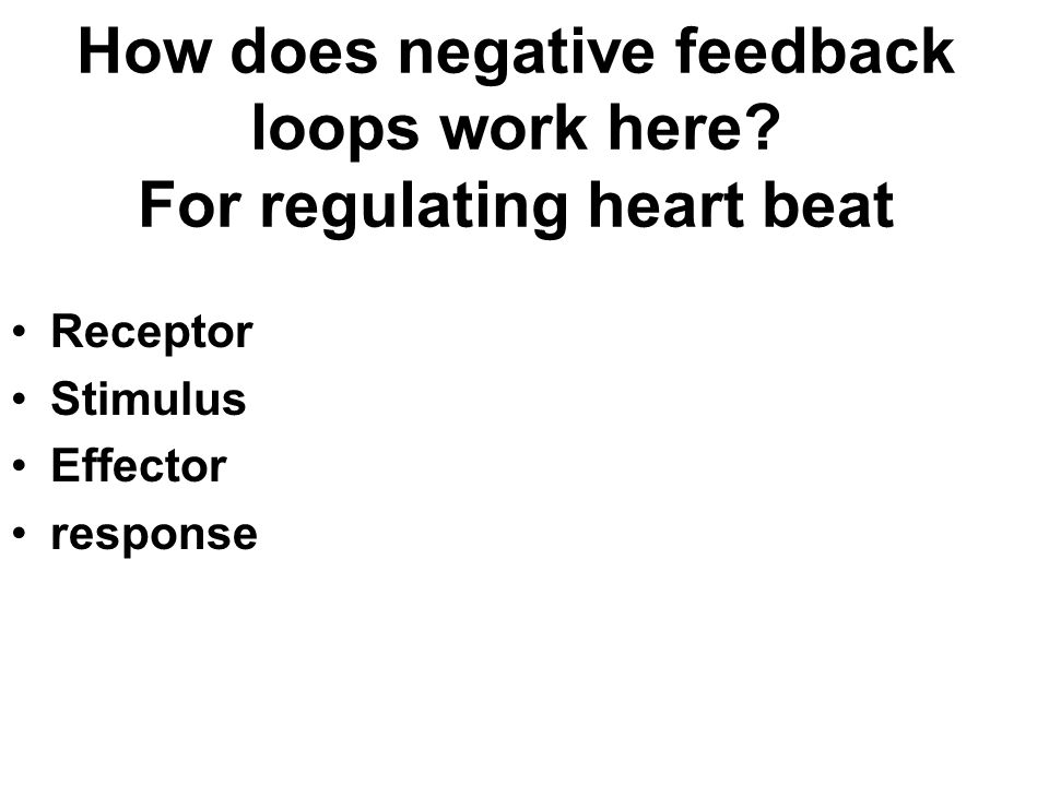 How does negative feedback loops work here For regulating heart beat