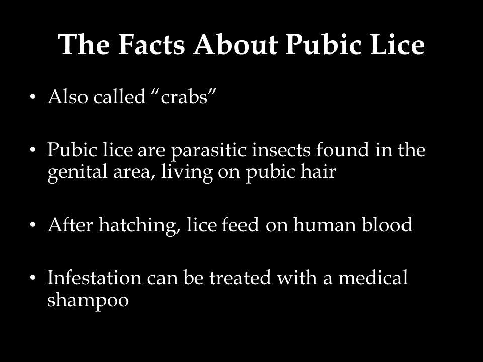 The Facts About Pubic Lice