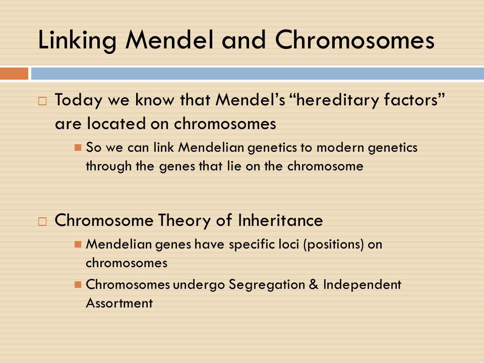 Linking Mendel and Chromosomes