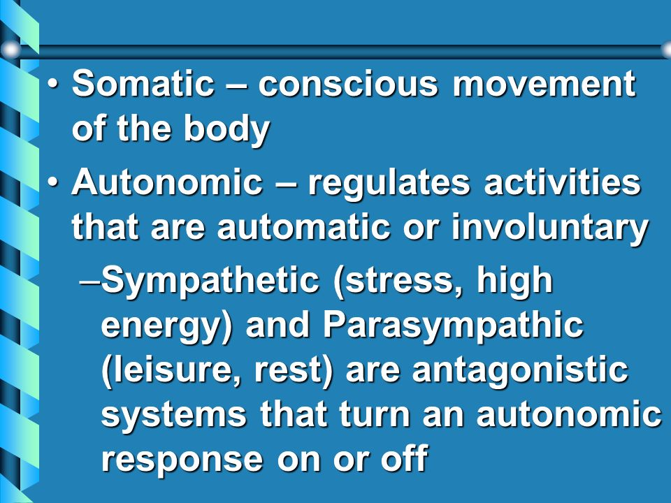 Somatic – conscious movement of the body