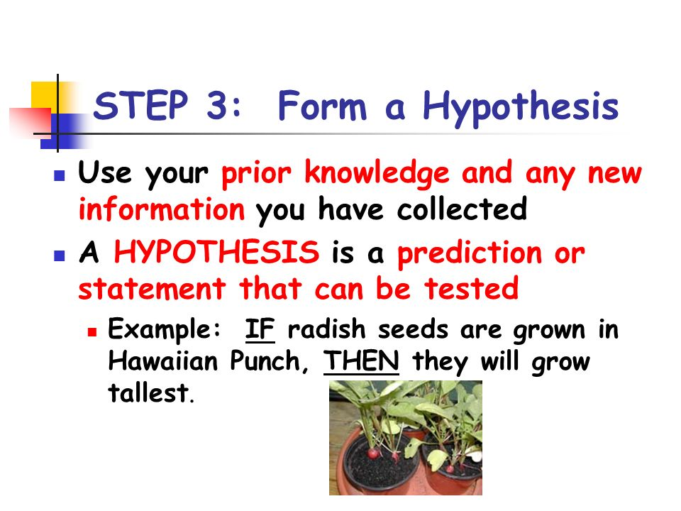 STEP 3: Form a Hypothesis