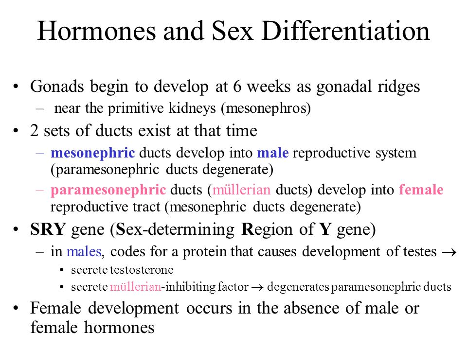Hormones and Sex Differentiation