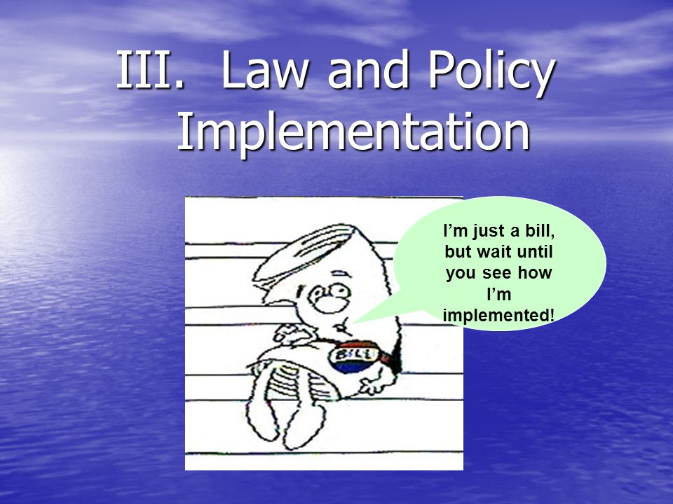 III. Law and Policy Implementation