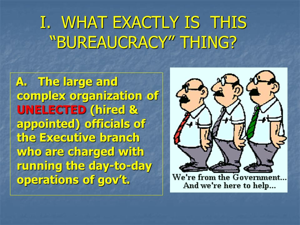 I. WHAT EXACTLY IS THIS BUREAUCRACY THING