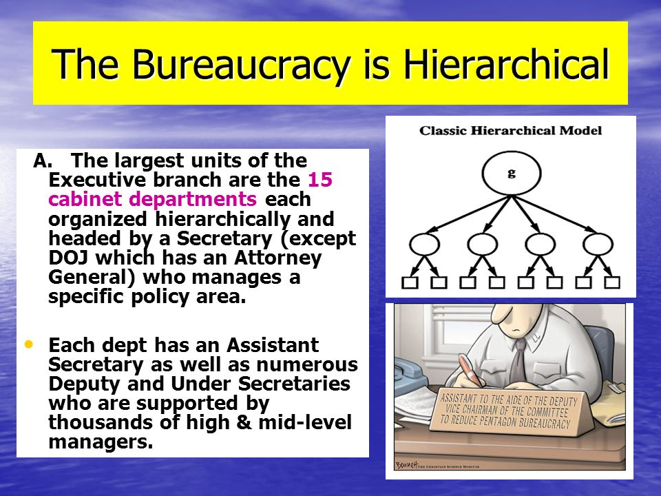 The Bureaucracy is Hierarchical