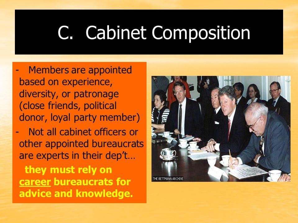 C. Cabinet Composition - Members are appointed based on experience, diversity, or patronage (close friends, political donor, loyal party member)