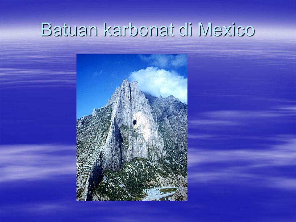 Batuan karbonat di Mexico