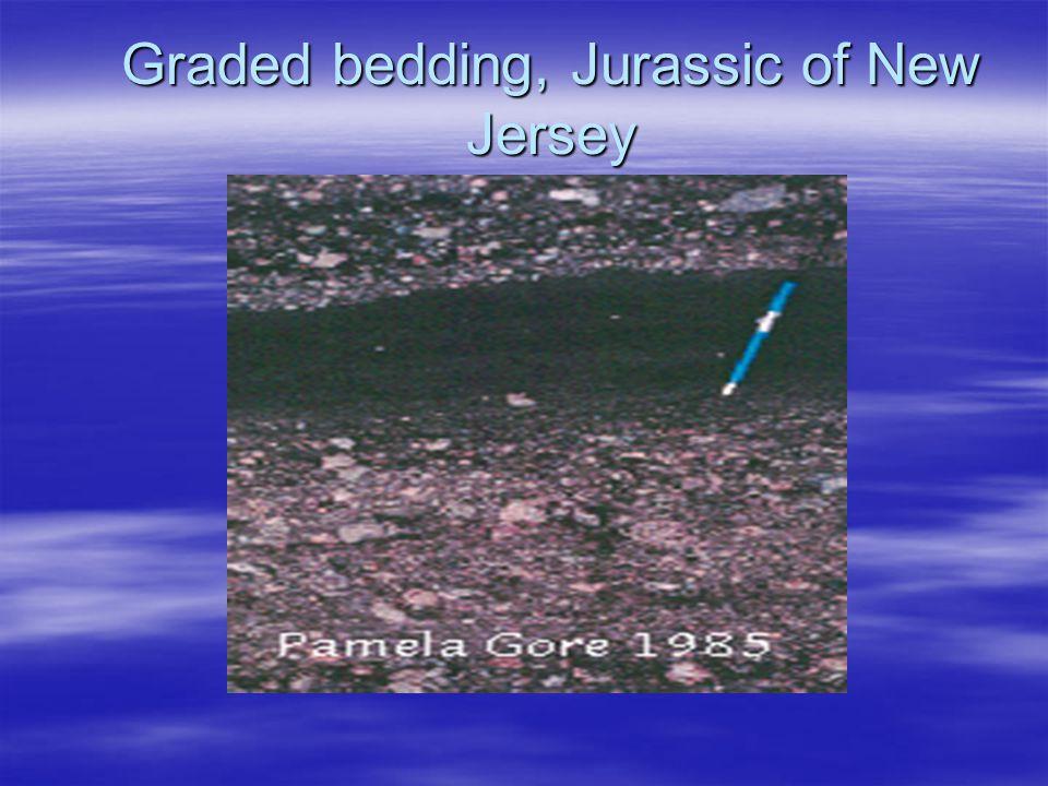 Graded bedding, Jurassic of New Jersey