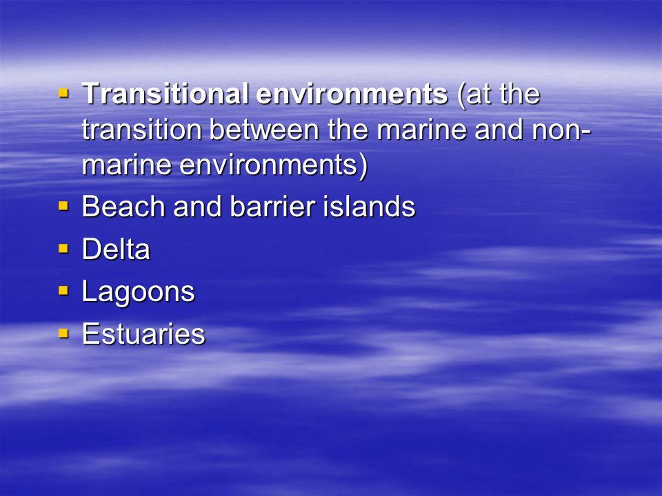 Transitional environments (at the transition between the marine and non-marine environments)