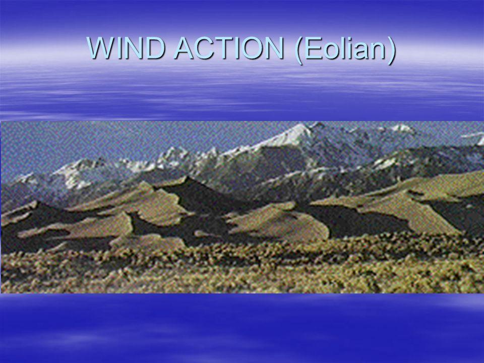 WIND ACTION (Eolian)