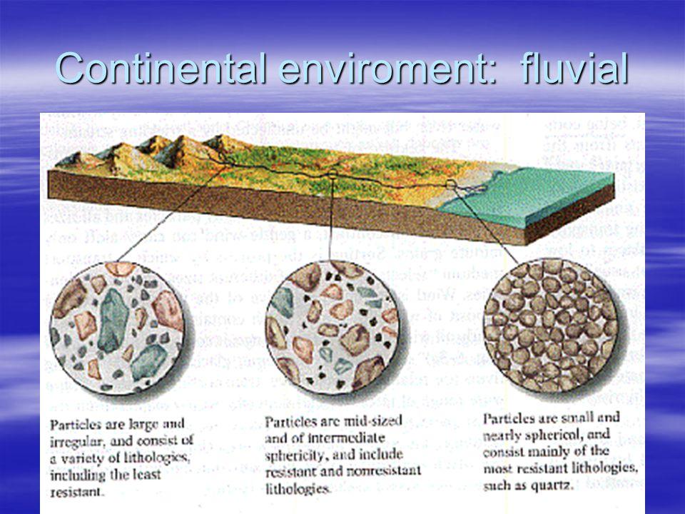 Continental enviroment: fluvial