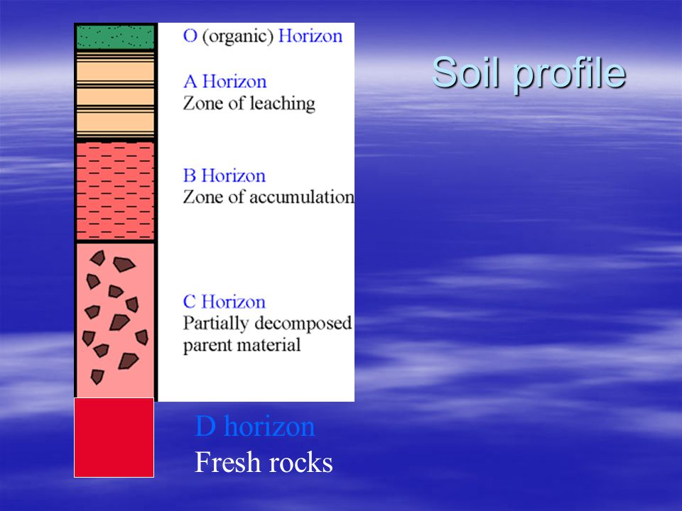 Soil profile D horizon Fresh rocks