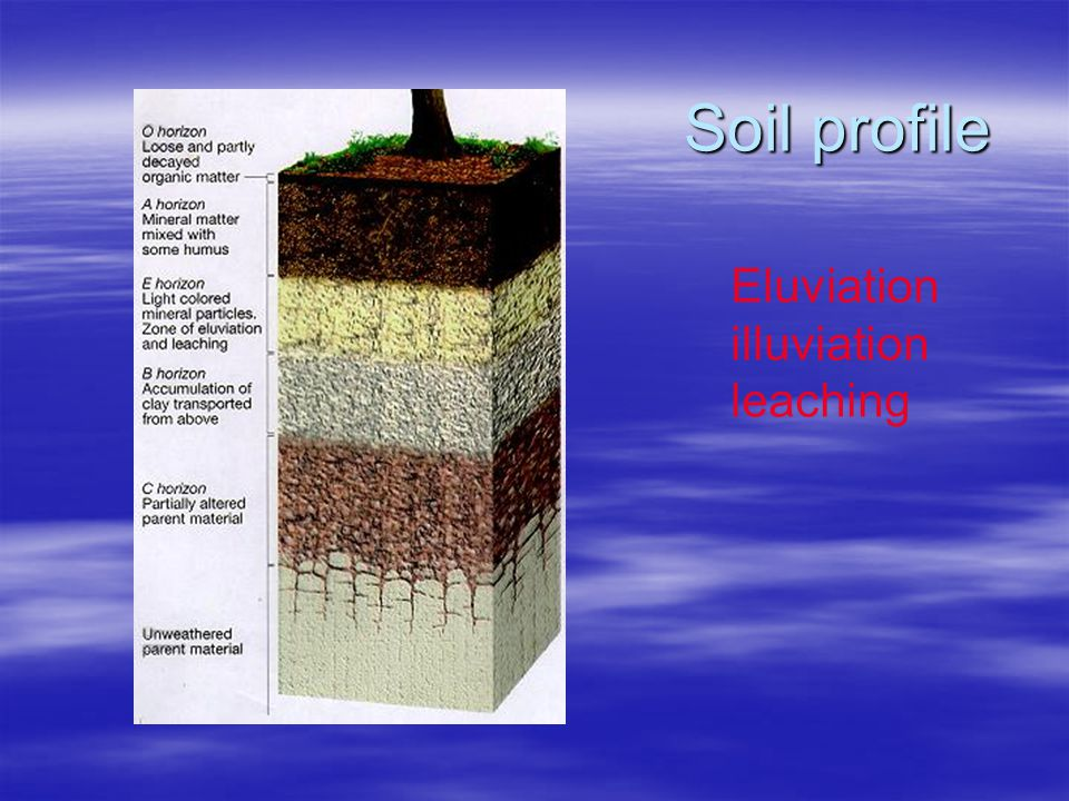Soil profile Eluviation illuviation leaching