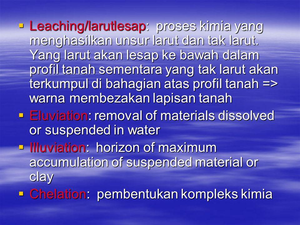 Leaching/larutlesap: proses kimia yang menghasilkan unsur larut dan tak larut. Yang larut akan lesap ke bawah dalam profil tanah sementara yang tak larut akan terkumpul di bahagian atas profil tanah => warna membezakan lapisan tanah