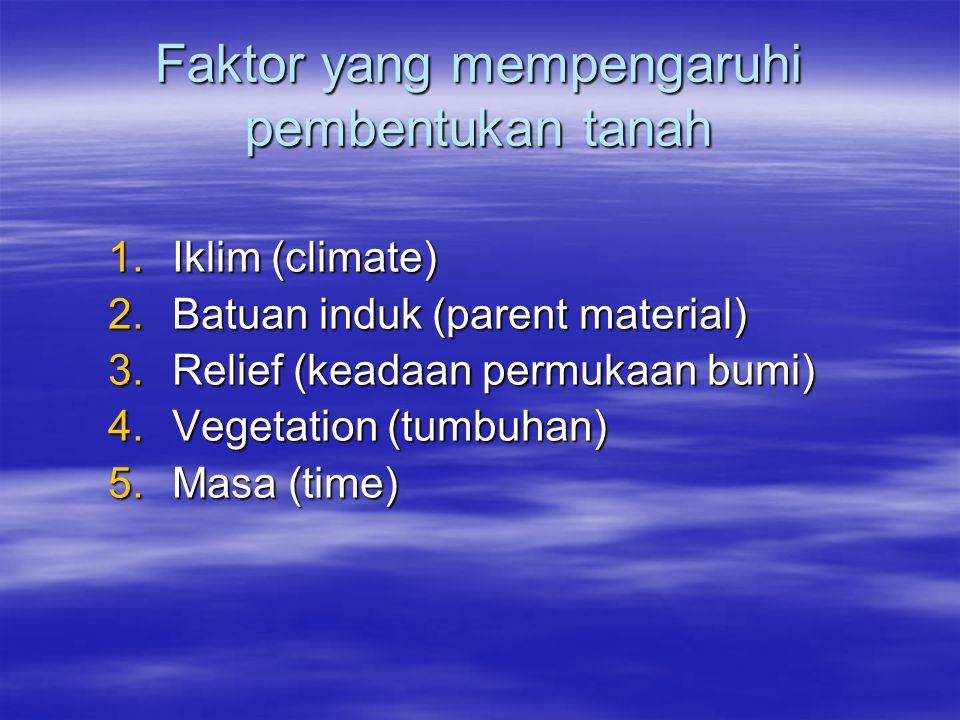 Faktor yang mempengaruhi pembentukan tanah