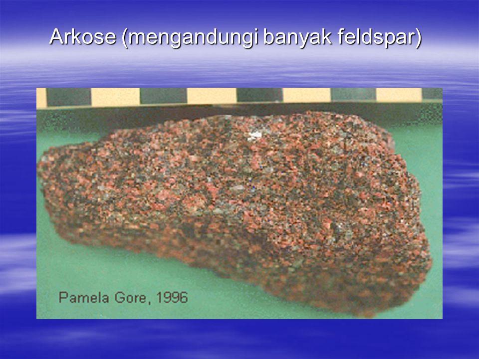Arkose (mengandungi banyak feldspar)
