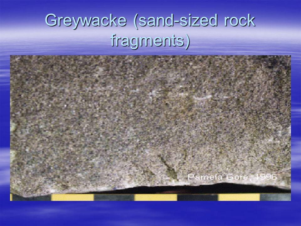 Greywacke (sand-sized rock fragments)
