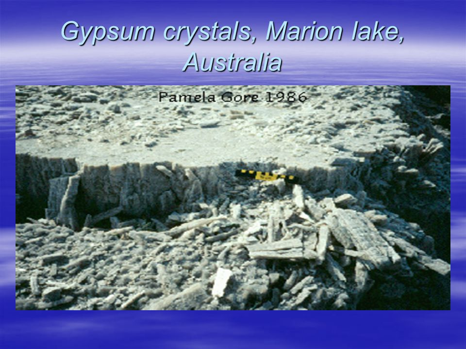 Gypsum crystals, Marion lake, Australia