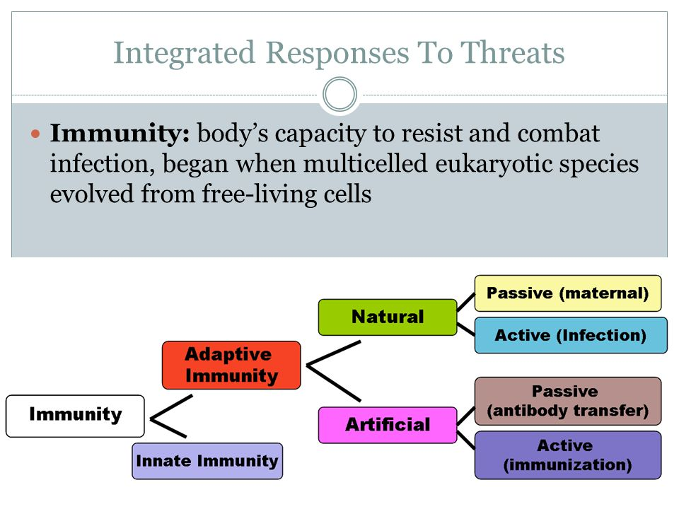Integrated Responses To Threats