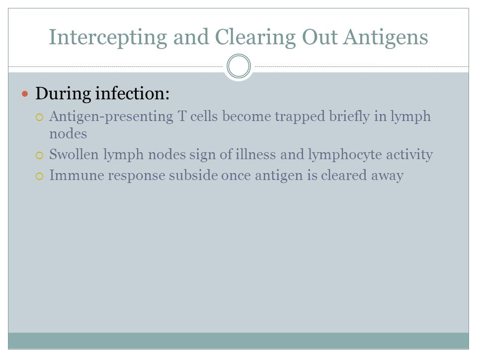 Intercepting and Clearing Out Antigens