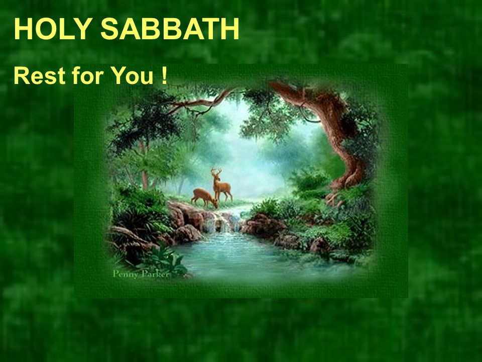 HOLY SABBATH Rest for You !