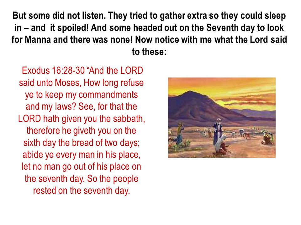 But some did not listen. They tried to gather extra so they could sleep in – and it spoiled! And some headed out on the Seventh day to look for Manna and there was none! Now notice with me what the Lord said to these:
