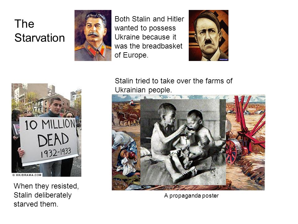 Both Stalin and Hitler wanted to possess Ukraine because it was the breadbasket of Europe.