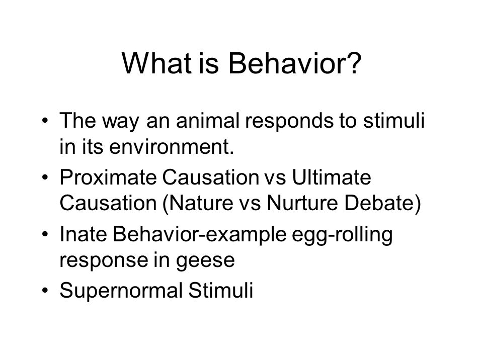 What is Behavior The way an animal responds to stimuli in its environment. Proximate Causation vs Ultimate Causation (Nature vs Nurture Debate)