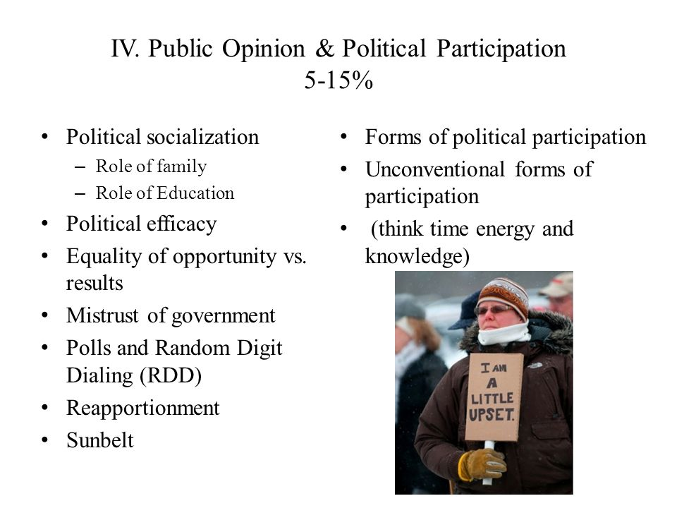 IV. Public Opinion & Political Participation 5-15%