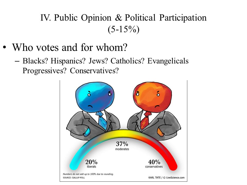 IV. Public Opinion & Political Participation (5-15%)