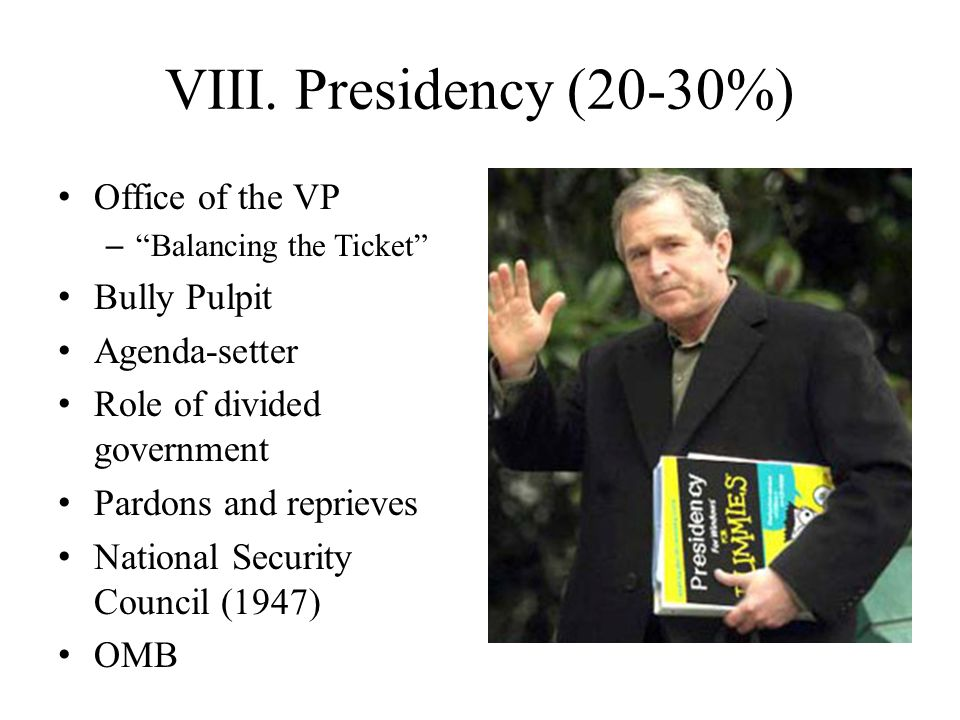 VIII. Presidency (20-30%) Office of the VP Bully Pulpit Agenda-setter