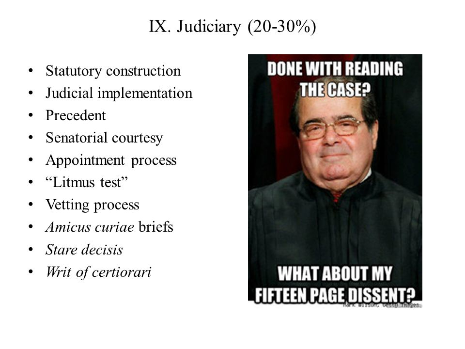 IX. Judiciary (20-30%) Statutory construction Judicial implementation