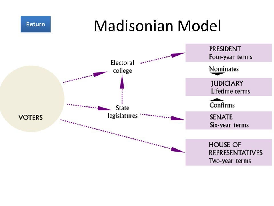 Madisonian Model Return