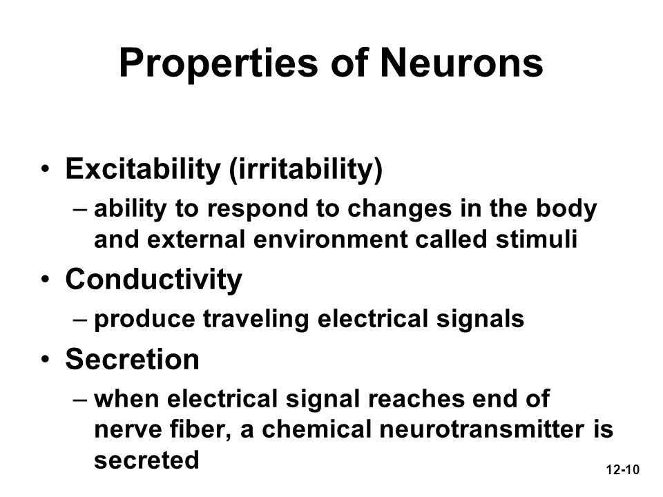 Properties of Neurons Excitability (irritability) Conductivity