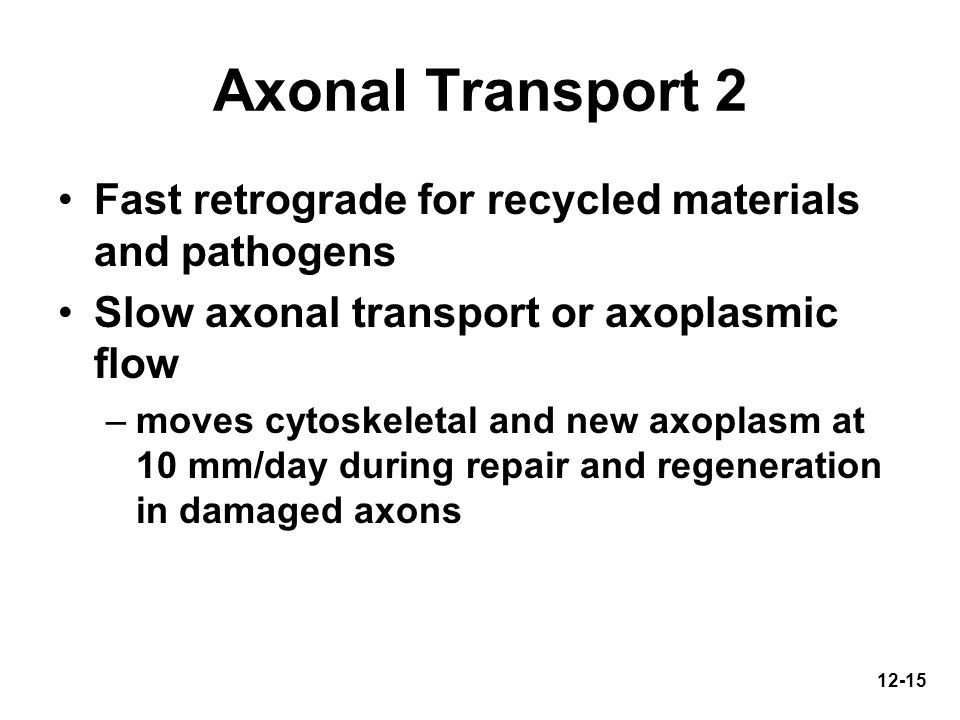 Axonal Transport 2 Fast retrograde for recycled materials and pathogens. Slow axonal transport or axoplasmic flow.