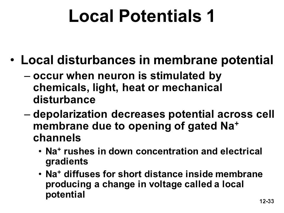 Local Potentials 1 Local disturbances in membrane potential