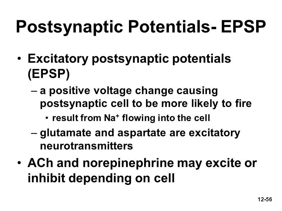 Postsynaptic Potentials- EPSP