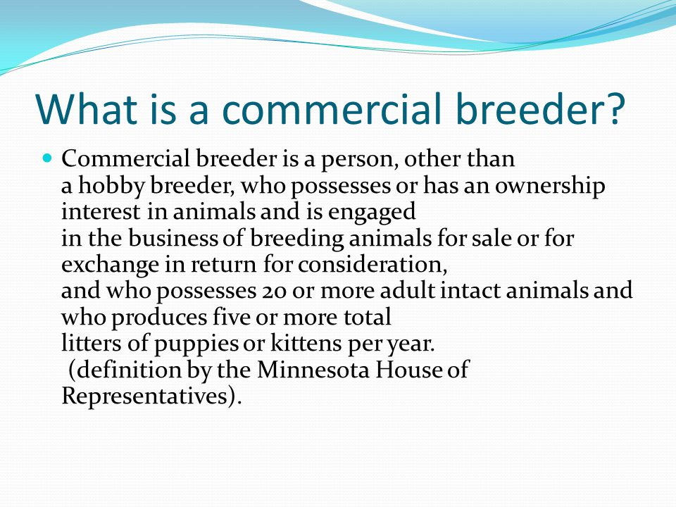 What is a commercial breeder