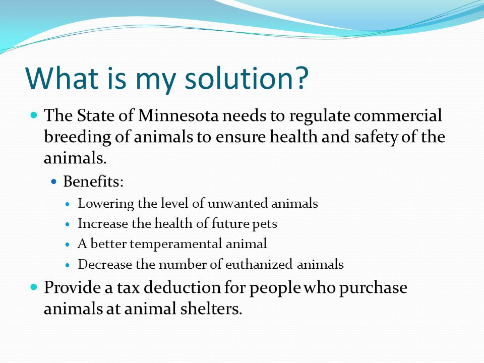 What is my solution The State of Minnesota needs to regulate commercial breeding of animals to ensure health and safety of the animals.