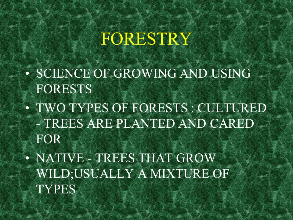FORESTRY SCIENCE OF GROWING AND USING FORESTS