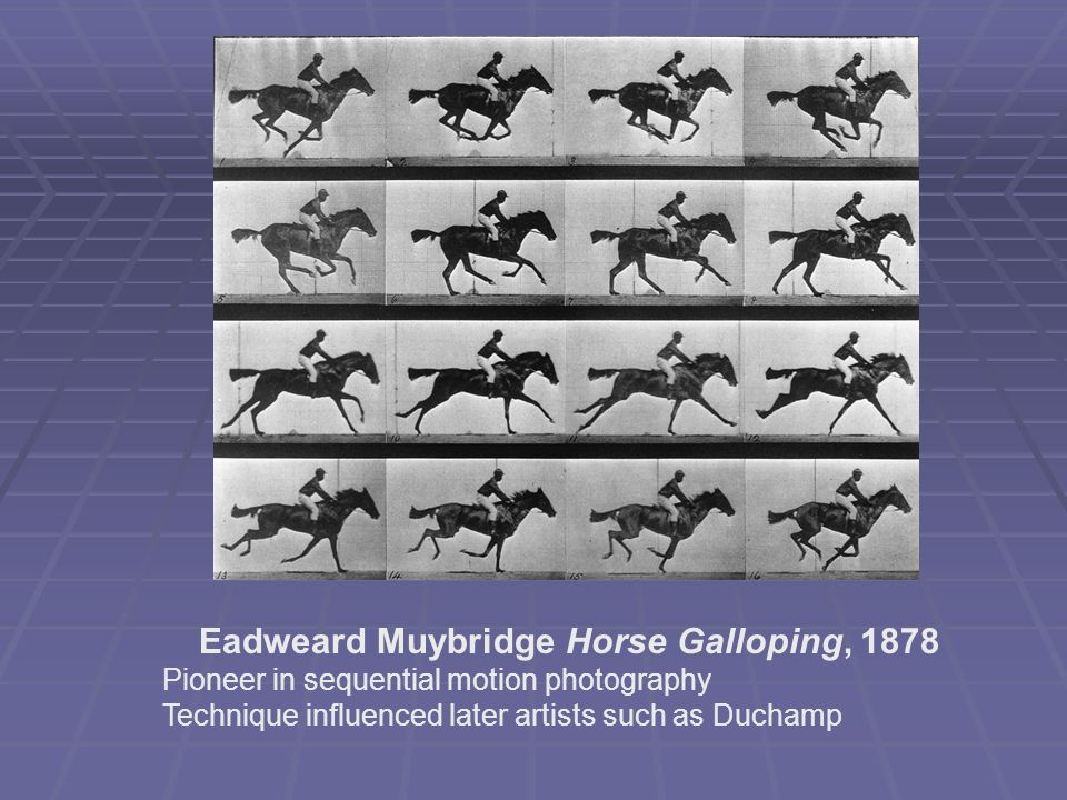 Eadweard Muybridge Horse Galloping, 1878