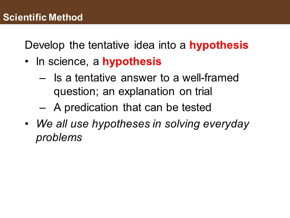 Develop the tentative idea into a hypothesis In science, a hypothesis
