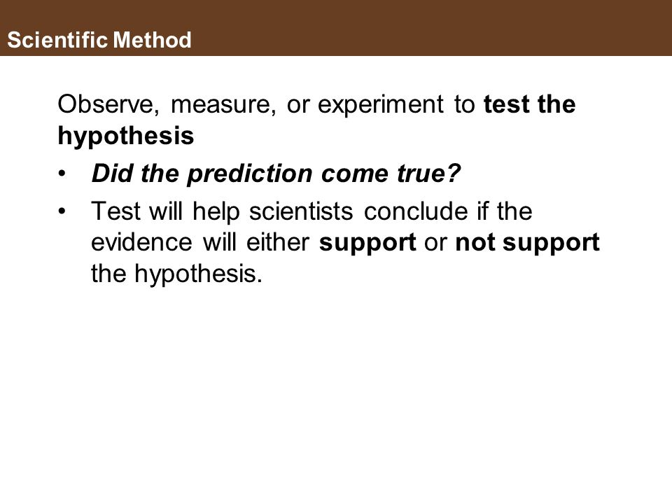 Observe, measure, or experiment to test the hypothesis
