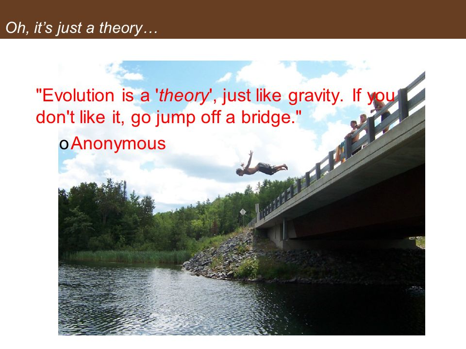 Oh, it's just a theory… Evolution is a theory , just like gravity. If you don t like it, go jump off a bridge.