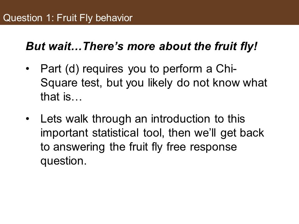 Question 1: Fruit Fly behavior