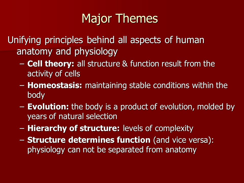 Major Themes Unifying principles behind all aspects of human anatomy and physiology.